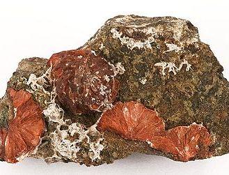 Clinoptilolite-209885